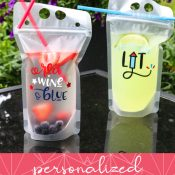 Adult Beverage Pouches with Graphic for Pinterest Pin