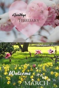 Goodbye February, Hello March