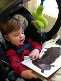 reading on flight