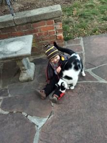jenson cat