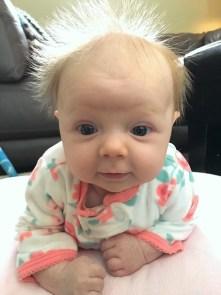 marlowe baby bird hair