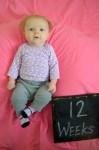 marlowe 12 weeks