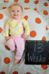 marlowe 13 weeks