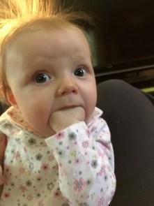 marlowe 4 months