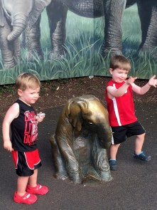 jenson and max zoo