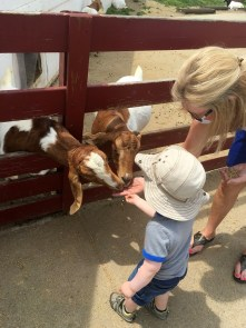 jenson and nana at youngs dairy