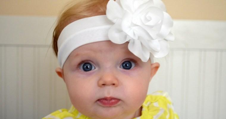 Marlowe update: 8 months old