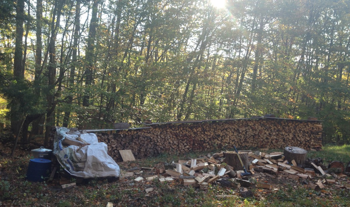 The woodpile is a mixture of ash, cherry, birch, and poplar.