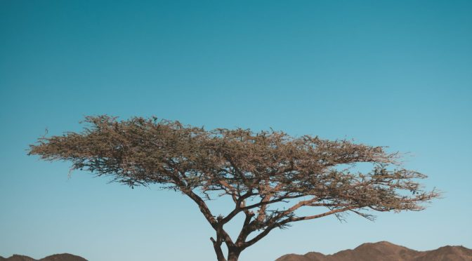 Surah Al-i-Imran – Ayah 165
