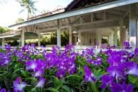 Thailand Tropical Garden   The idea of tropical garden