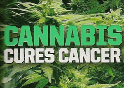 https://i0.wp.com/www.thcfinder.com/uploads/files/cannabis-cure-skin-cancer.jpg