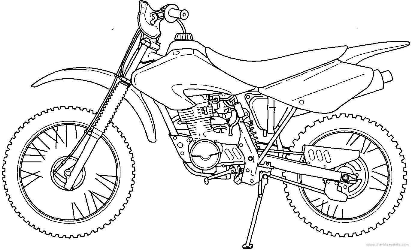 Blueprints > Motorcycles > Honda > Honda XR 80R (2003)