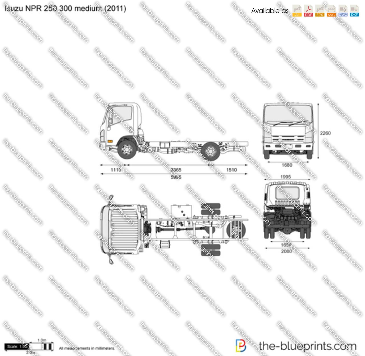 Isuzu NPR 250 300 medium vector drawing