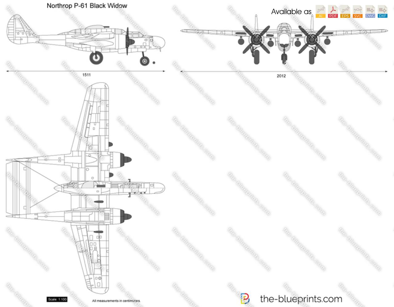 Northrop P 61 Black Widow Vector Drawing