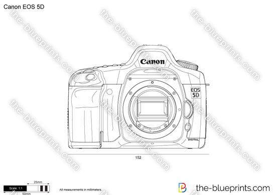 Canon EOS 5D vector drawing