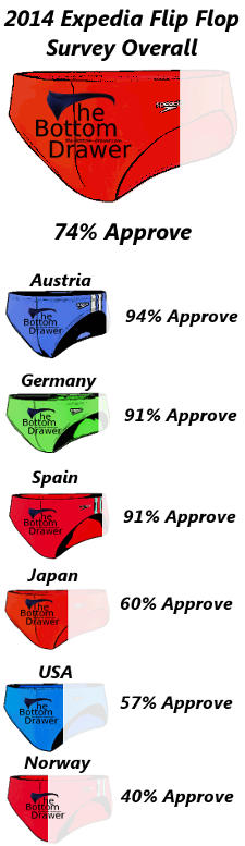 Expedia 2014 Survey - Swim Brief