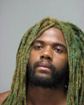 Jeremiah Albert Johnson tried to steal woman's purse at Potomac Mills and then snatched cell phone as she tried to call for help. Is that a green mop on his head? Call MOLD BUSTERS!