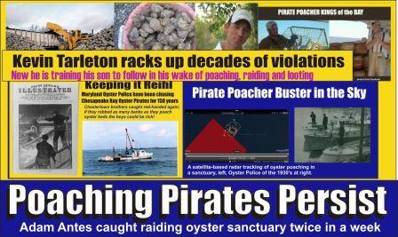 Poaching Pirates Persist