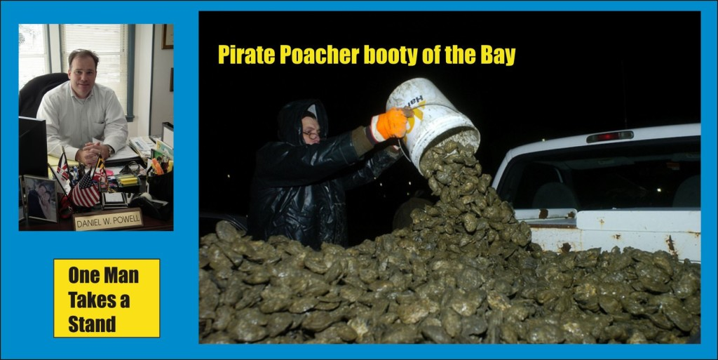 Pirate Poacher of the Bay One Man Takes a Stand