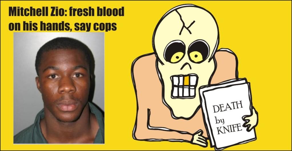 Mitchell Zio murder in Silver Spring 061415