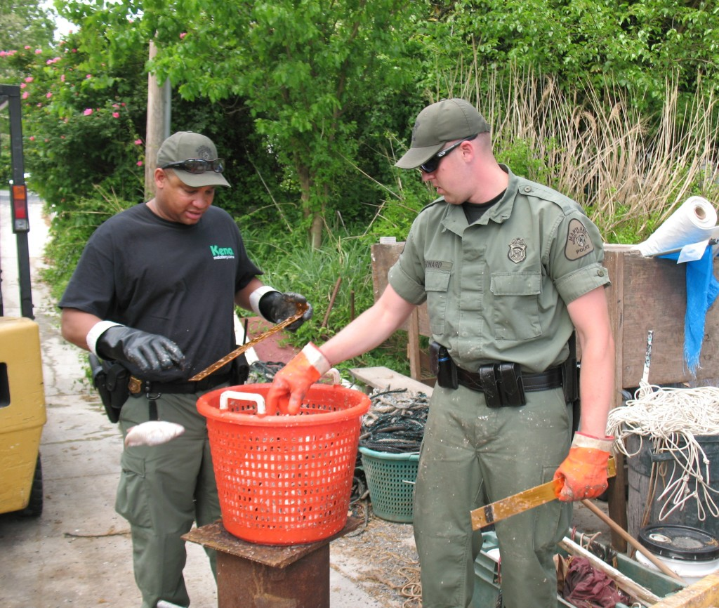 Thousands of undersized croakers wound up dead after the Lumpkin's boats were nabbed for poaching in mouth of Patuxent River in 2015.