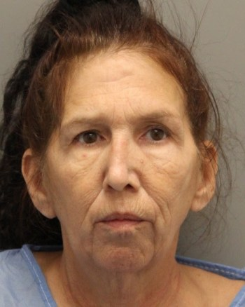 Angela-M.-Mossinger-Bingham-51-of-Felton-charged-with-murder-of-grandson-Del-State-Police.j