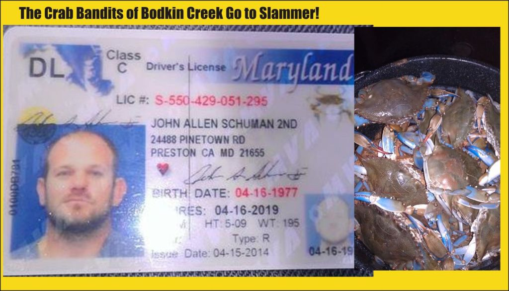 John Shuhman posted his drivers permit on FB and his crab catch