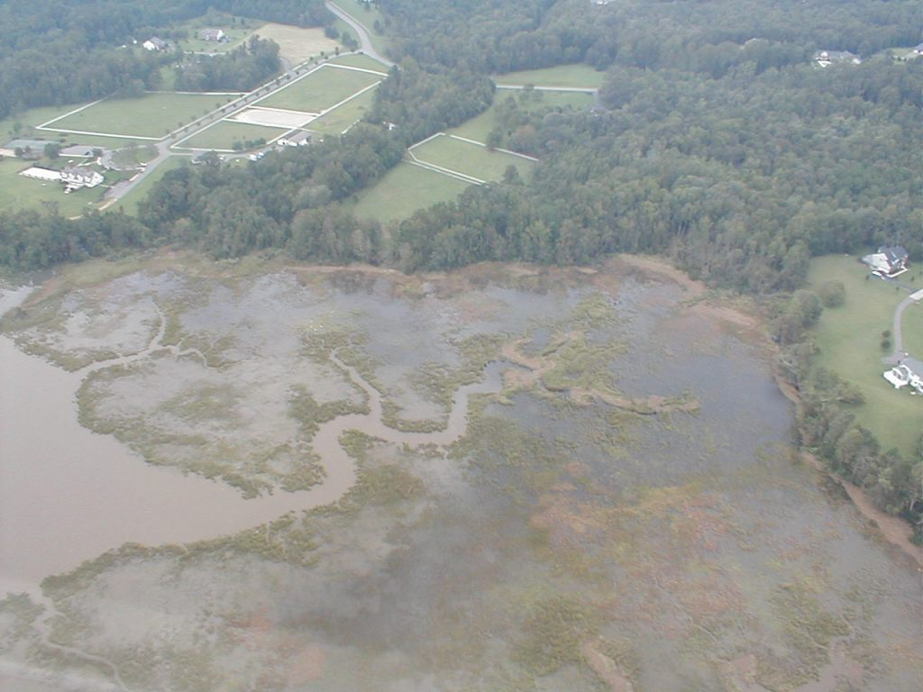 Swamps became creeks with a nine foot storm surge.