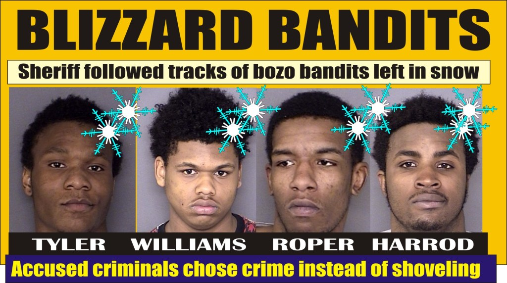 Blizzard Bandits