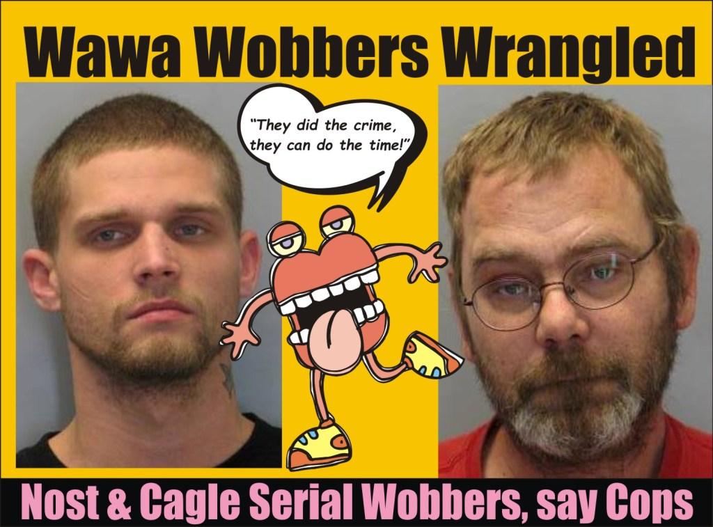Wawa Wobbers Wrangled delaware state  police 020716