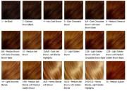 hair extension colours medium