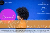 Houston Events, Natural Hair Events, Beauty Events, Black Events this year, Natural hair events this year, Houston events this year, What to do in Houston today, What to do in houston this weekend, Hurricane Harvey Relief Efforts, Black Organizations for Hurricane Harvey