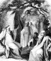 druid council