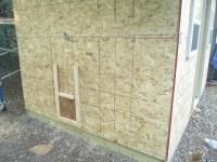 Building a Chicken Coop: Part 2  Scott Family Homestead