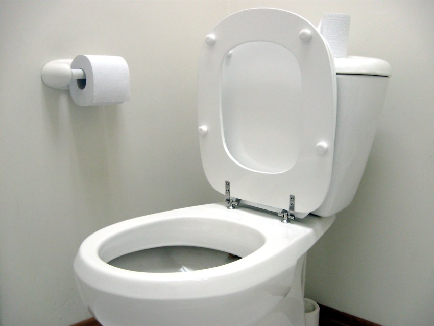 unblock a clogged toilet