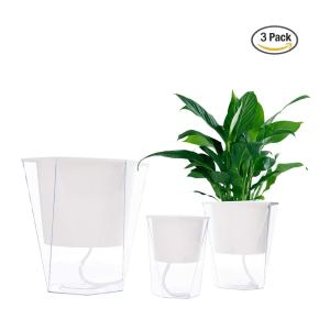 wicking self watering pot plants