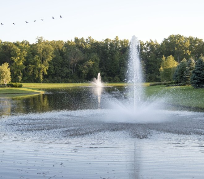 Choose The Right Floating Pond Fountain