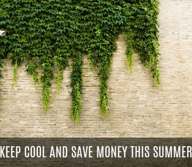 Keep Cool and Save Money This Summer With These Awesome Home Improvements