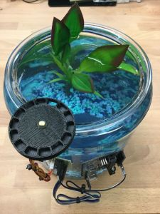 Attach Your Fish Feeder Over The Water