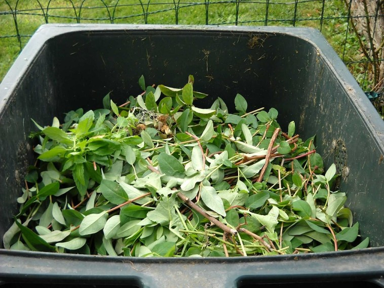 Choosing Or Making A Composter