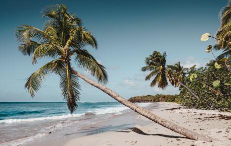 Fit auf Martinique