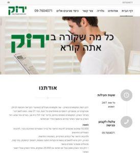 דף לדוגמא של האתר
