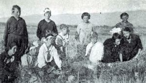 Young Women harvest grain for the Relief Society (Keepapitchin)