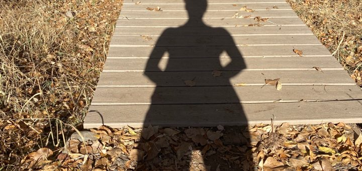 Wood bridge, no hand rail, crosses dry ground, shadow of a person extends from viewer to middle of bridge. Dry leaves and grasses surround bridge.
