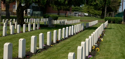 Several rows plain white gravestones on green field with trees in background. Flowers rest against some of the headstones.
