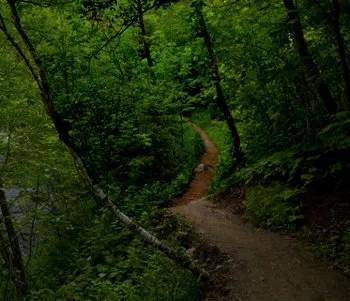 wrong path © Calamityjohn | Dreamstime.com