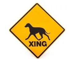 Dog crossing © Anke Van Wyk | Dreamstime.com
