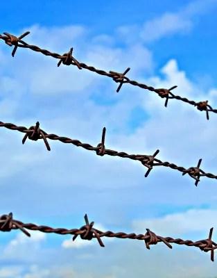 Barbed Wire © nuchylee   freedigitalphotos.net