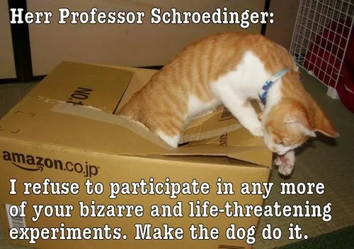 Cat escaping Schrödinger's box © anomalous4 | freedigitalphotos.net