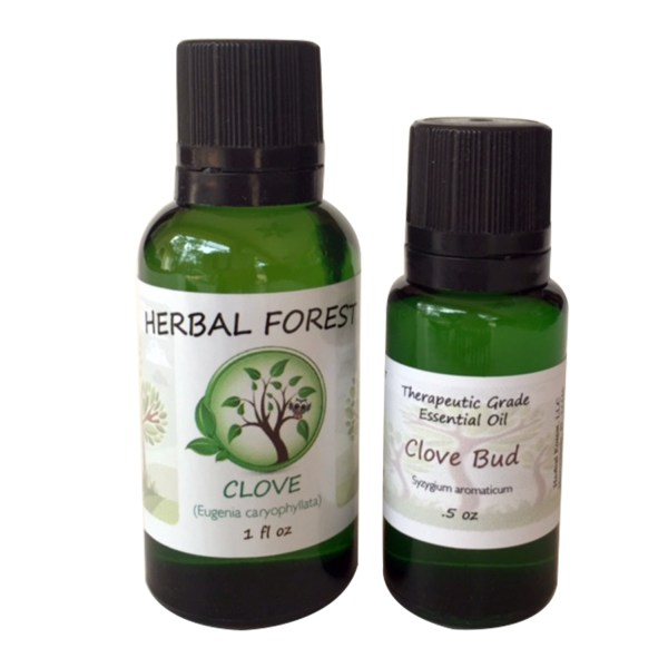 image of Herbal Forestr clove essential oil